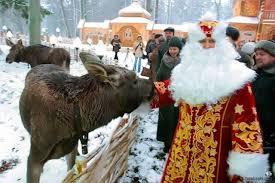 Животные Беловежской пущи