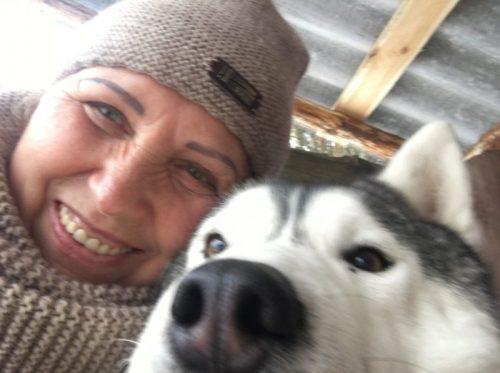 Хаски - самая дружелюбная к человеку собака